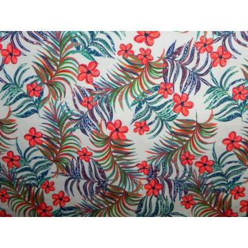 Coralina Conejitos